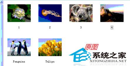 WinXP縮略圖顯示異常的解決方法